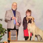getting her 1st point at 10 mo. with junior handler Skyelar Williams